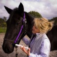 Stress-free horse worming